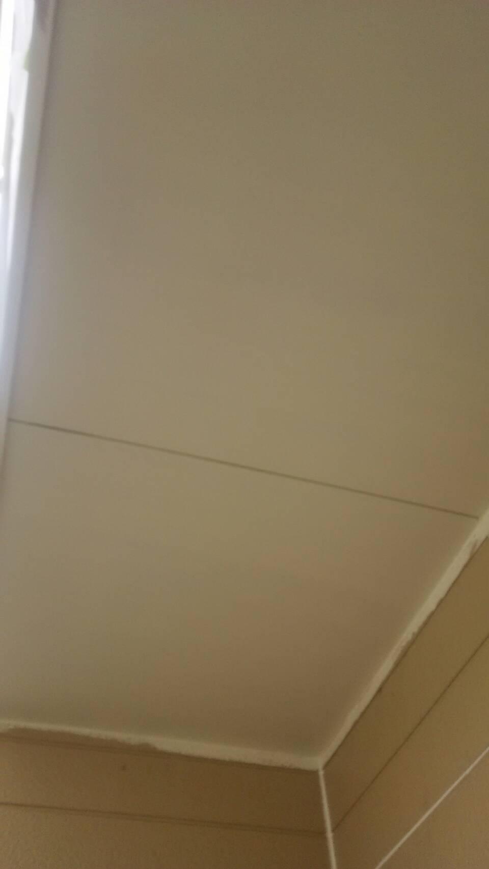 岡山市中区Y様邸 軒防カビ塗料