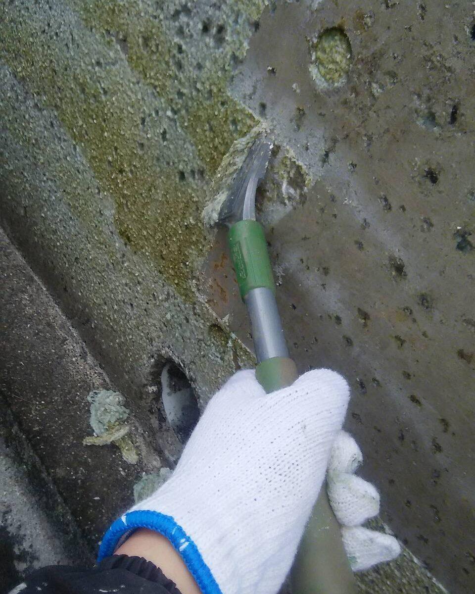 岡山市北区K様邸 外塀 剥離作業